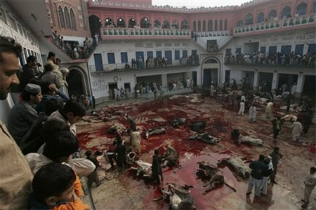 Muslim <b><i>Discount Holidays ©</i></b> Holiday Of Eid Al-Adha And The Barbaric Slaughter Of Animals ...