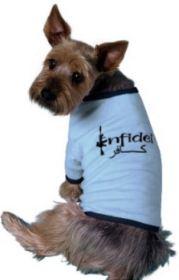 infidel dog Capture