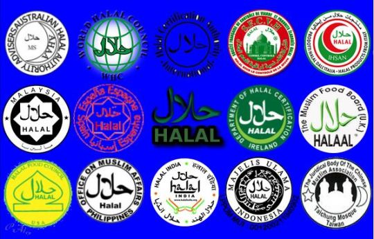halal global Capture