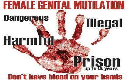 fgm poster 2Capture