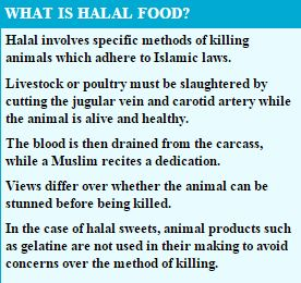 WHAT IS HALAL FOOD Capture