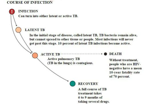course of infection tb Capture